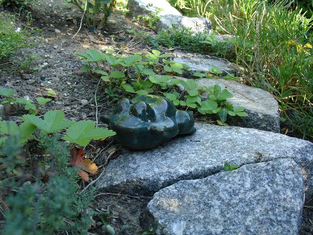 Grenouille en poterie vernissée