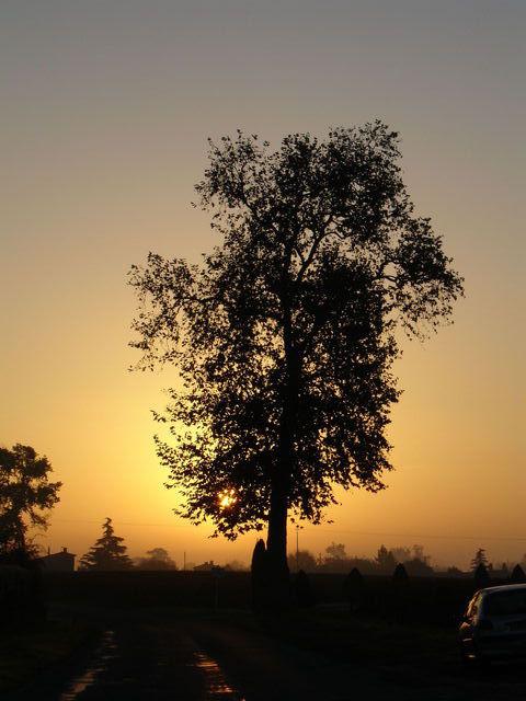Le même lever de soleil vers St Emilion, autre prise de vue