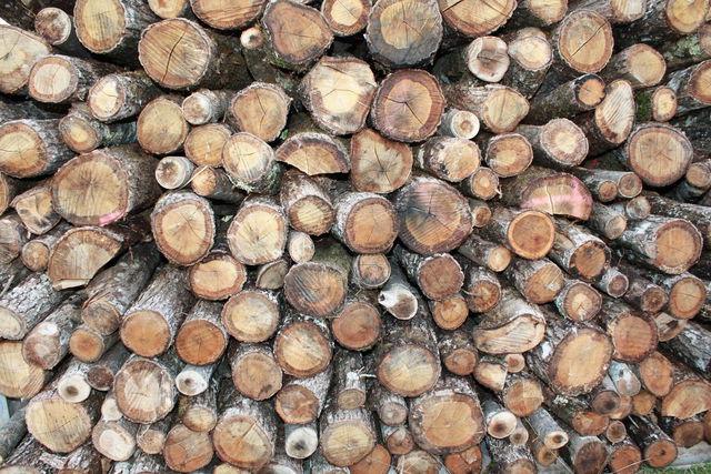 Rondis de bois empilés
