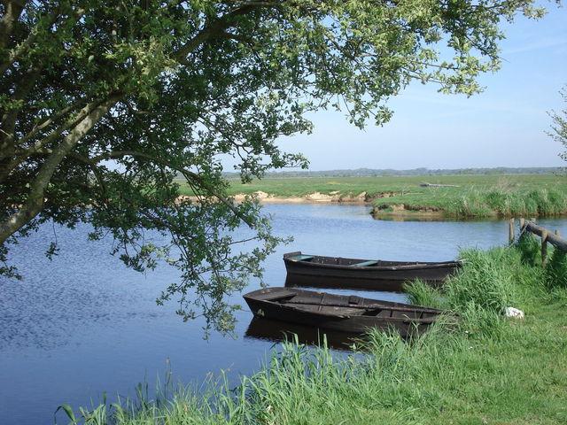 Barques sur un marais
